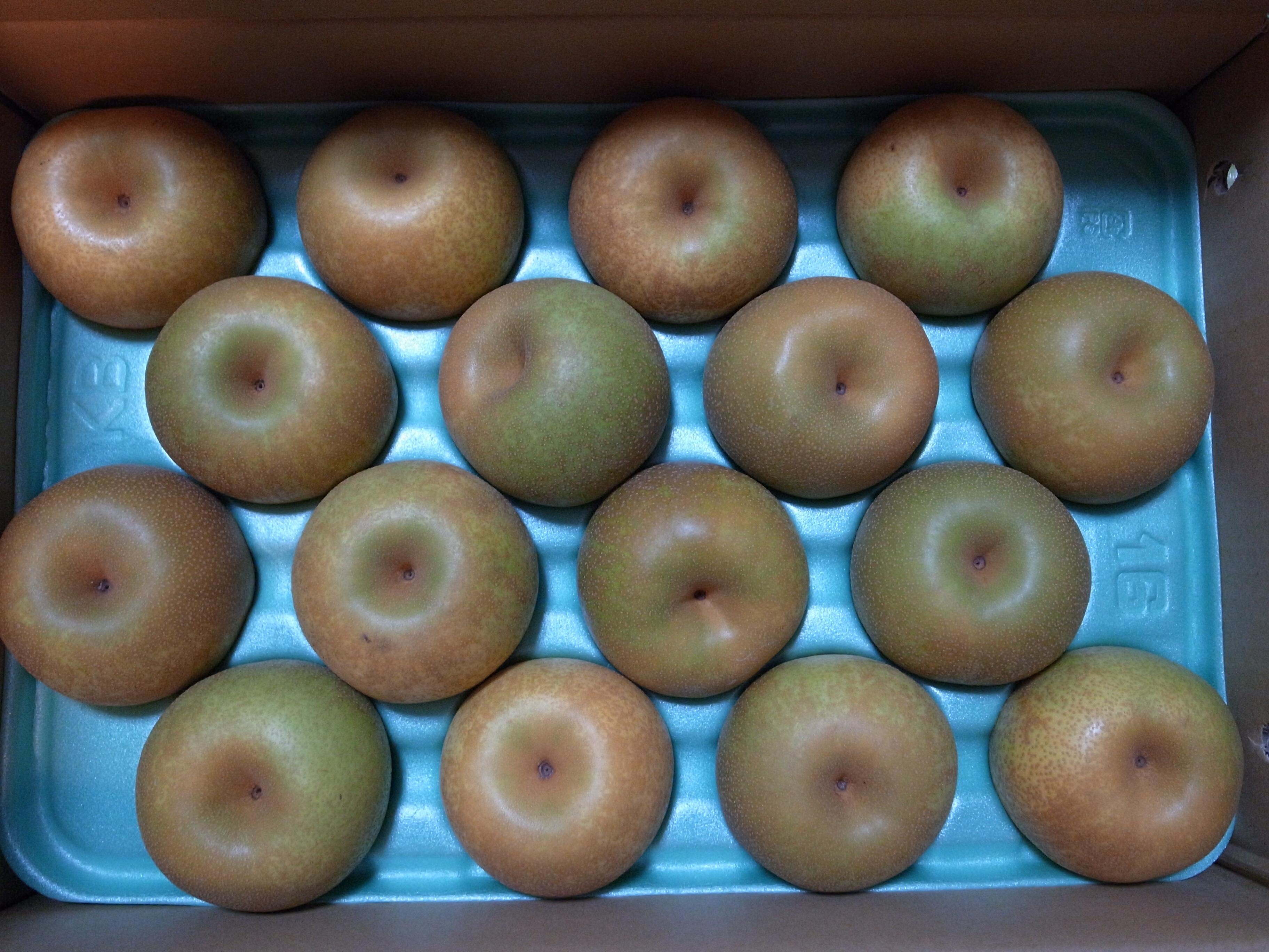久しぶりに念願の千葉県産の梨を送ってもらった!